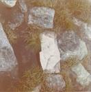 Thoreau Spring by Gorp-Gobbler in Katahdin Gallery