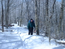 Great Smoky Mts March 2004 by WILLIAM HAYES in Trail & Blazes in North Carolina & Tennessee