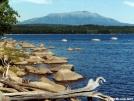 Pemadumcook Lake by veteran in Views in Maine