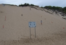 Sand Dune by doodah man in Special Points of Interest