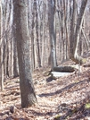 Hike To Sarver's Cabin by jla6357 in Trail & Blazes in Virginia & West Virginia