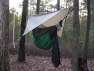 Hennessy Ul Backpacker With Ul Explorer Tarp by RobertM in Hammock camping