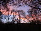 Sunrise In Snp by MistressJenkins in Trail & Blazes in Virginia & West Virginia