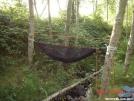 hammock w/o tarp