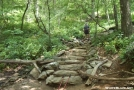 Rock steps at southern base of Blood Mountain by mdevinc in Trail & Blazes in Georgia