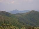 Appalachian Trail: Georgia by CocamoJoe in Section Hikers