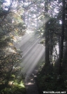Old Speck Rays of Sun by celt in Trail & Blazes in Maine