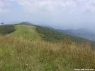 Big Bald by Chalumeau in Trail & Blazes in North Carolina & Tennessee