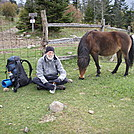 D communing with teh ponies in Grayson Highlands, MT Rogers National Recreation Area by Sardenia in Members gallery