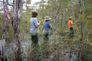 Swamp Walkers At 2008 Muck-about by wahoo in Florida Trail