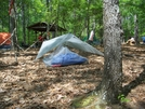 Ray-way Tarp And Net Tent by jesse in Section Hikers