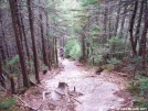 mahoosuc arm trek by walkin' wally in Views in Maine
