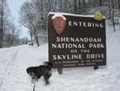 Snow In Shenandoah, Dec. 6, 2009 by Darwin again in Members gallery