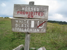 New Sign At Massie Gap by Egads in Views in Virginia & West Virginia