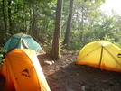 Morning Dew by sly dog in Tent camping