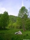 Elk River, Tenn. by Pokey2006 in Tent camping