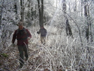Citico Creek Hike