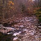 imag0694 by Alligator in Trail & Blazes in Vermont