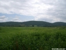 Wallkill River NWR by Alligator in Views in New Jersey & New York