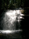 Long Creek Falls by Alligator in Special Points of Interest