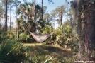 HH Trial by DareN in Hammock camping