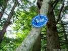Northville-Placid Trail by eArThworm in Other Trails